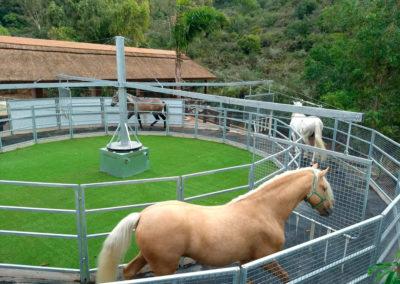 instalaciones_centrohipico_marbella
