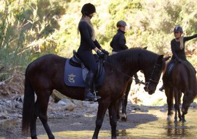 Ruta a caballo en marbella Horse trekking (1)