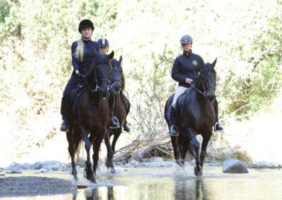 Ruta a caballo en marbella Horse trekking (6)